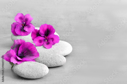 Canvas Prints Zen Spa concept with flower and zen stones