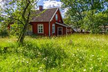 Overgrown Garden At A Red Cott...