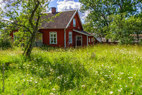 Overgrown garden at a red cottage
