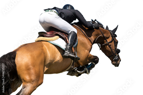 Equestrian Sports, Horse Jumping Event, Isolated on White Background