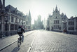 canvas print picture - Historic houses in Ghent, Belgium