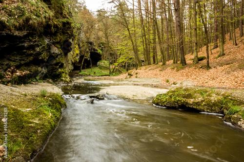 Creek in Czech Republic Poster