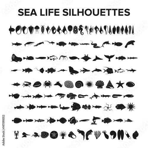 Sea life collection - vector illustration Wall mural