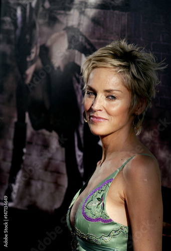 Actress Sharon Stone Arrives For The World Premiere Of The Film