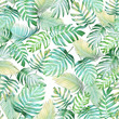 canvas print picture - Tropical leaves seamless pattern of Monstera philodendron and palm leaves in light green-yellow color tone, tropical background.