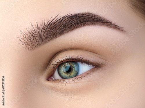 Poster Iris Close up view of beautiful green female eye