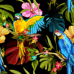 Fototapeta Róże Seamless pattern of parrots on the tropical branches with chinese roses, tropical leaves and flowers. Hand drawn. Vector - stock