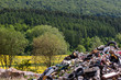 canvas print picture - Dangerous dump in the middle of nature near forest, Czech Republic