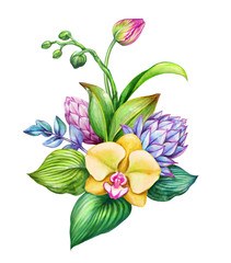 Panel Szklany Storczyki watercolor floral illustration, exotic nature, tropical flowers bouquet, orchid, green leaves, isolated on white background