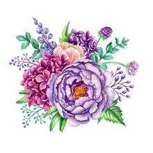 Watercolor Illustration, Flora...