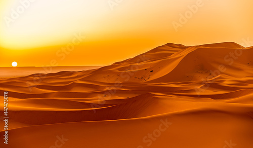 Sunrise over the sand dunes of Erg Chebbi in Sahara , Morocco