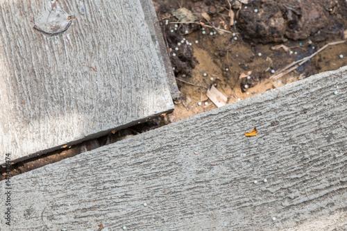 Fototapety, obrazy: cement floor texture