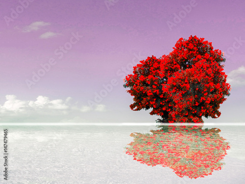 Fototapeta red tree reflection