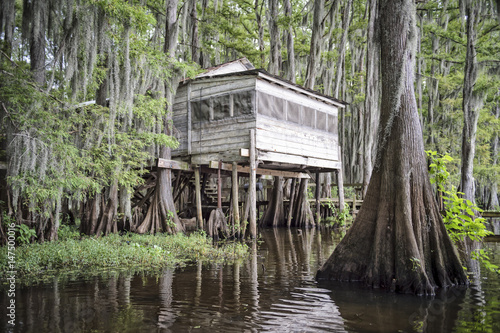 Typical scene from the American South featuring a shack on stilts nestled in bal Fototapet