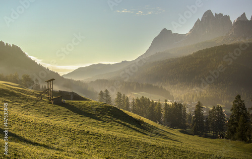 Alpine meadow at sunset, Dolomites, Italy - 147533845