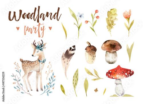 ilustracja-dziecieca-motywy-lesne-i-jelonek-grzyby-rosliny
