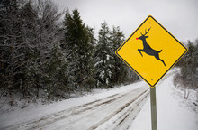 Rudolph The Red Nosed Reindeer Road Sign