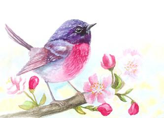 Fototapeta Ptaki watercolor bird sitting on blossom flowers tree branch