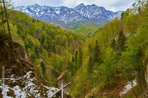 Fototapeta Alpine landscape in the spring