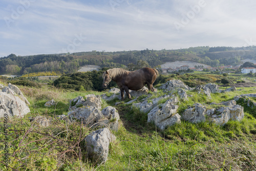 Walking along the Buelna coast in Asturias