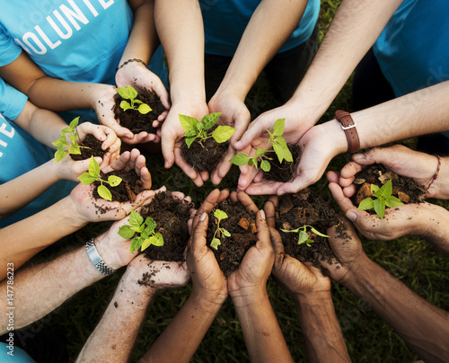 Stampa su Tela Group of environmental conservation people hands planting in aerial view