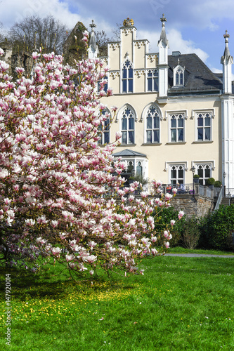 Spring With Magnolia Tree In Full Bloom And A Manor House Germany