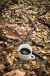 a cup of coffee on dry leaves