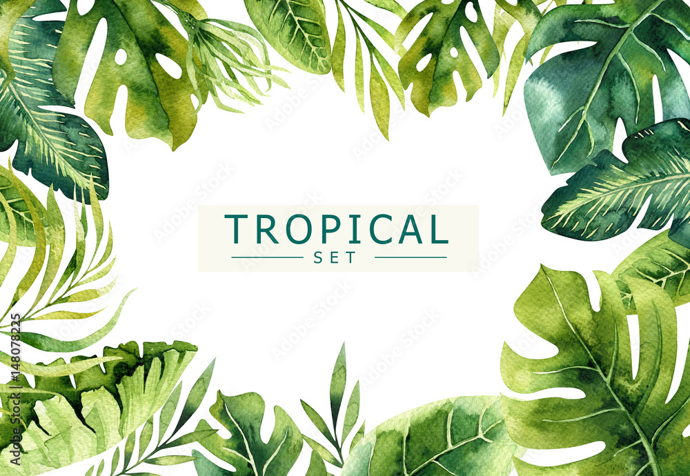 Fototapeta Hand drawn watercolor tropical plants background. Exotic palm leaves, jungle tree, brazil tropic borany elements. Perfect for fabric design. Aloha art.