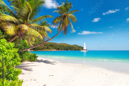 Foto op Plexiglas Palm boom Sandy beach with palm trees and a sailing boat in the turquoise sea on Paradise island.