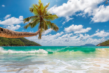 Obraz na Plexi Do łazienki Paradise beach.