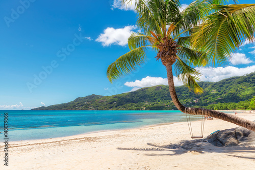 Keuken foto achterwand Palm boom Famous Beau Vallon beach with coconut palm tree on Mahe island, Seychelles.