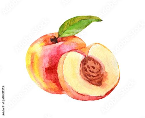 owoc-brzoskwini-akwarela
