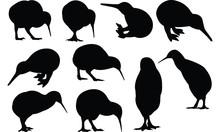 Kiwi Silhouette Vector Illustr...