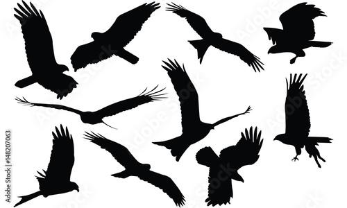 Kite Silhouette vector illustration Canvas Print