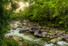 Mossman Gorge - River In Daint...
