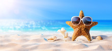 Starfish With Sunglasses On Th...