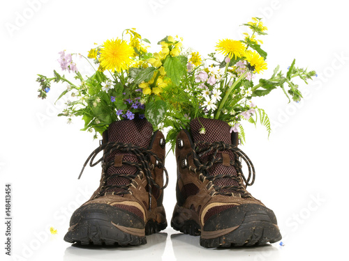Foto  Wanderschuhe mit Blumen
