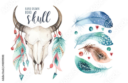 Foto auf AluDibond Aquarell Schädel Watercolor bohemian cow skull and feather. Western mammals. Boho hipster deer boho decoration print antlers. flowers, feathers.