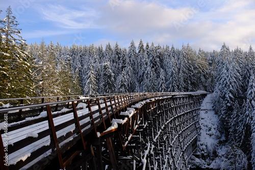trestle-en-hiver