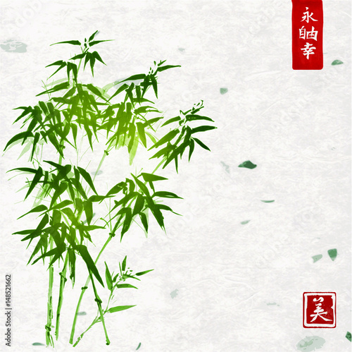 green-bamboo-on-handmade-rice-paper-background-traditional-oriental-ink-painting-sumi-e-u-sin-go-hua-contains-hieroglyphs-eternity-freedom-happiness-beauty