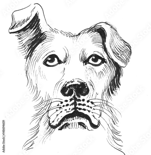 Photo sur Toile Croquis dessinés à la main des animaux Dog head sketch
