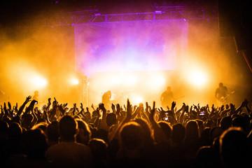 Obraz na płótnie Canvas Concert Crowd