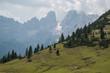 Prato Piazza, Platzwiese, Parco Naturale Fanes - Sennes - Braies, Alta Pusteria, Bolzano, Trentino Alto Adige, Italia