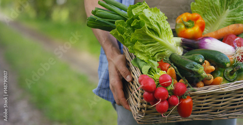 Keuken foto achterwand Keuken Portrait of a happy young farmer holding fresh vegetables in a basket. On a background of nature The concept of biological, bio products, bio ecology, grown by own hands, vegetarians, salads healthy