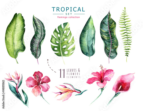 Hand drawn watercolor tropical plants set . Exotic palm leaves, jungle tree, brazil tropic botany elements and flowers. Perfect for fabric design. Aloha set Wall mural
