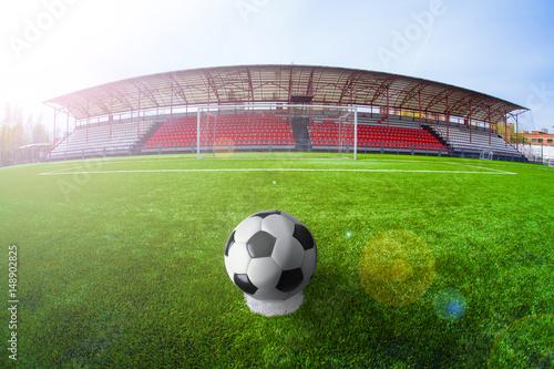 Fototapety, obrazy: Soccer arena, stadium