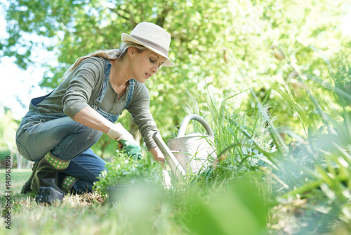 Fotomural Blond woman with hat gardening