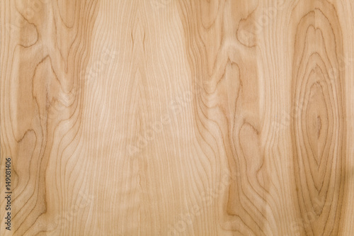 Wall Murals Forest Wood texture background
