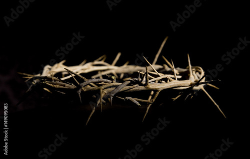 Fotografia Crown of Thorns