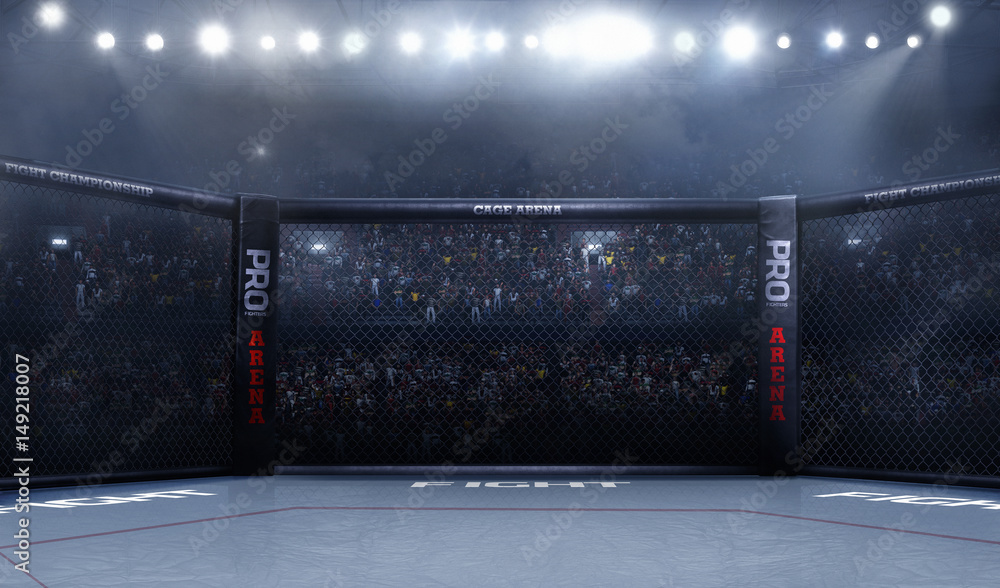 Fototapety, obrazy: Empty mma arena side view under lights. complete tribune.